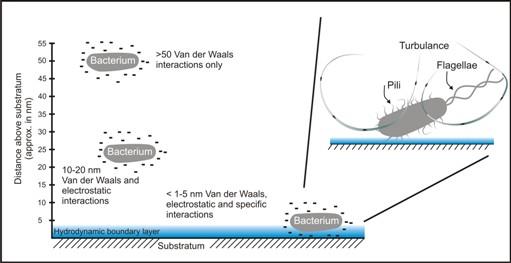 squirt org lists the best cruising spots in renfrew: van der waals definition yahoo dating